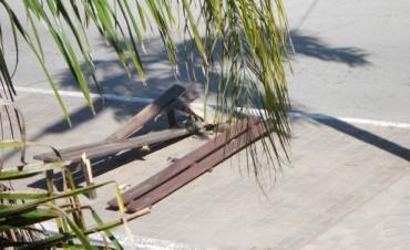 Destruyen un banco de madera en pleno centro