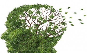 ALMA Asociación Lucha contra el Mal de Alzheimer San Nicolás informa