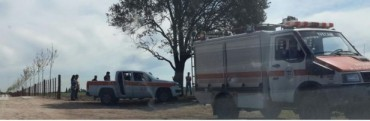 Tala de bosques nativos en Ramallo:Operativo del OPDS