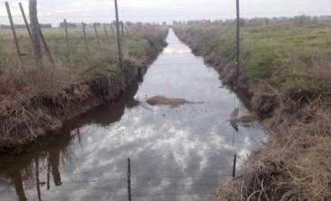 Muere un vecino de Villa Ramallo ahogado en un canal de desagüe en La Violeta