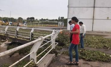 El puerto minutos después de los vientos huracanados