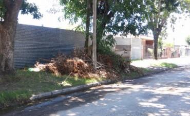 Villa Ramallo: Un reclamo reiterado calle Di Bacco