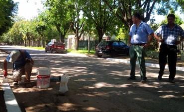 Barrio Don Antonio: El Municipio salió a pintar los cordones