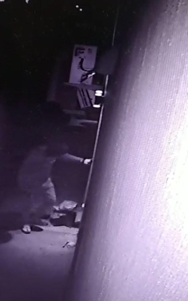 Intento de robo en Villa Ramallo