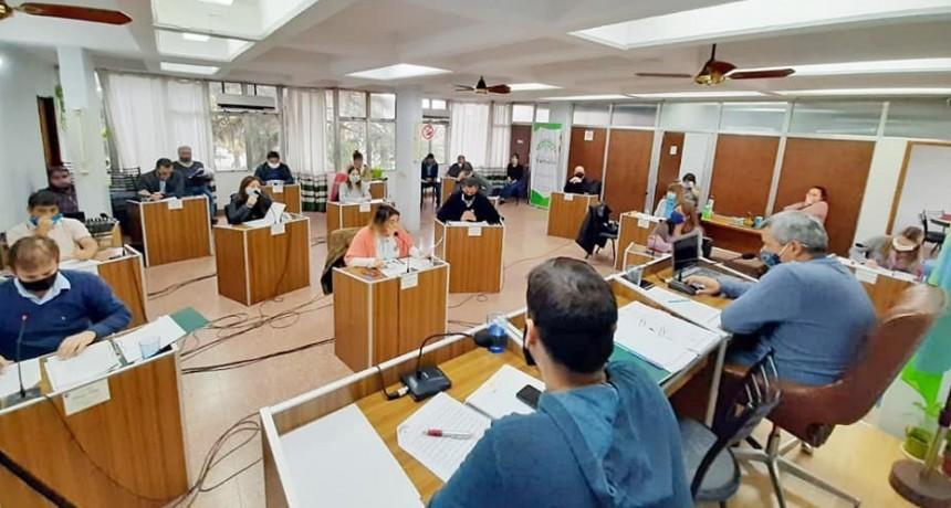 Proyectos y temas abordados en el Concejo Deliberante