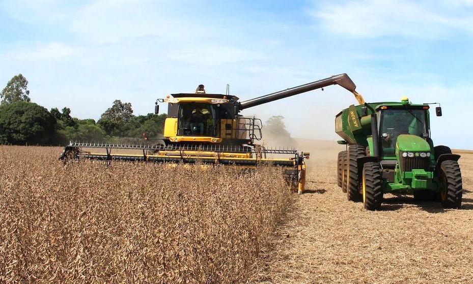 El precio de la soja creció un 90% en el último año