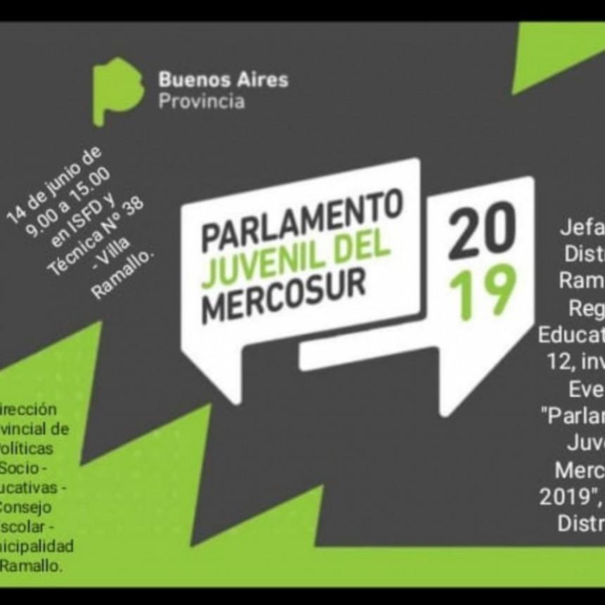 'VIII Parlamento Juvenil Mercosur 2019'