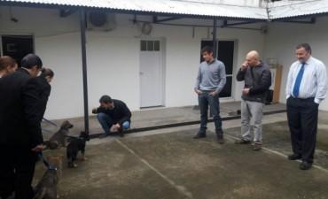 Presentaron los primeros tres ovejeros de la policía local