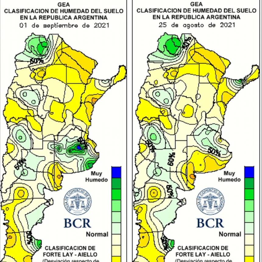 Las lluvias de septiembre salvan al trigo en la región núcleo