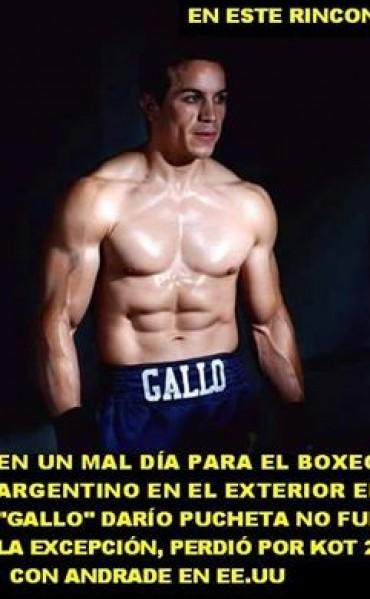 """El """"Gallo"""" Pucheta perdió por ko en los Estados Unidos"""