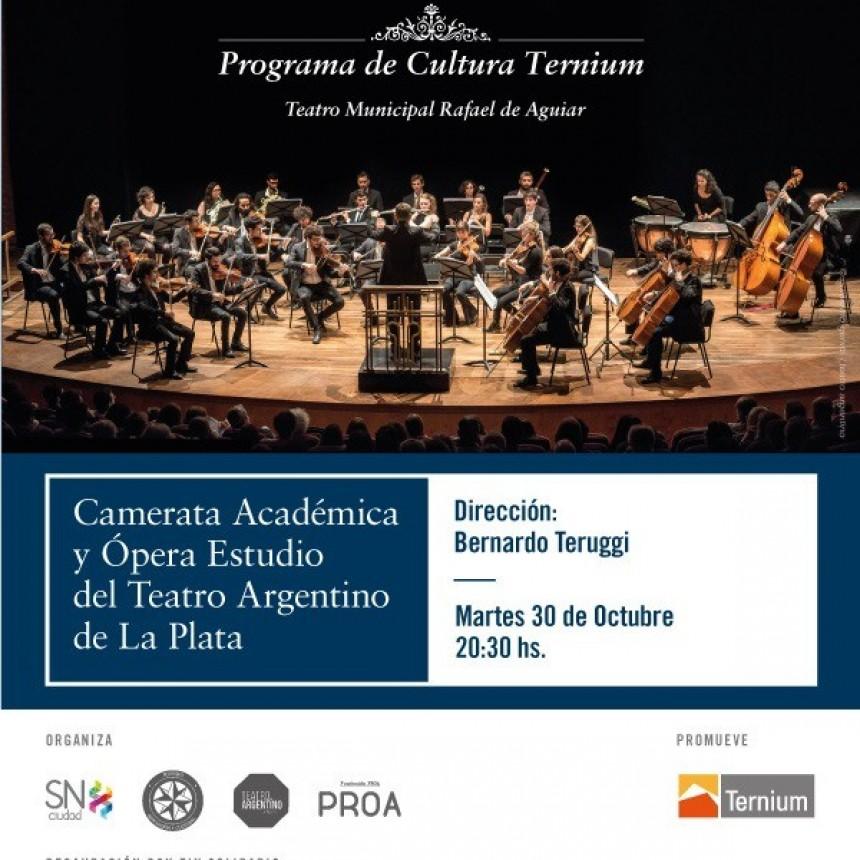 Programa de cultura Ternium
