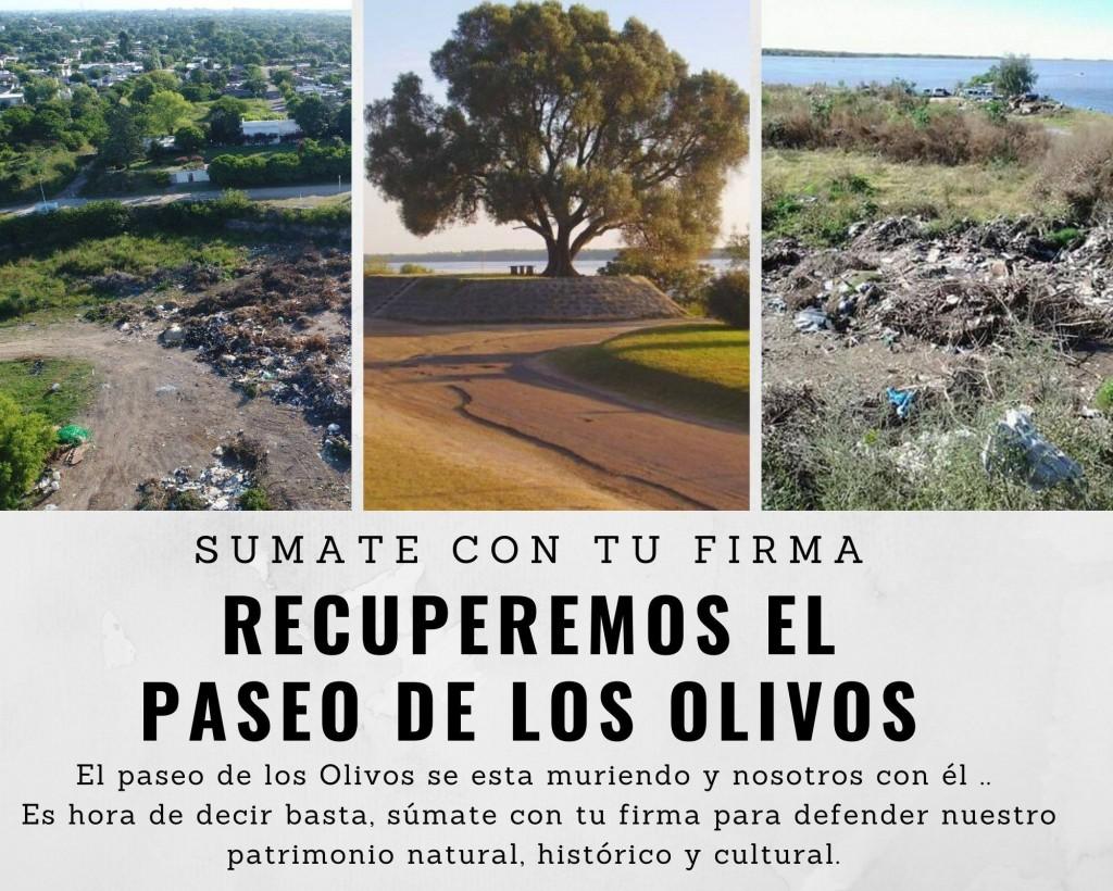 Piden recuperar el Paseo de los Olivos