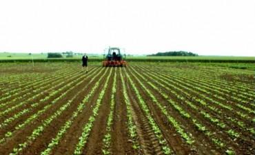 Vence la última cuota del impuesto inmobiliario rural en la provincia