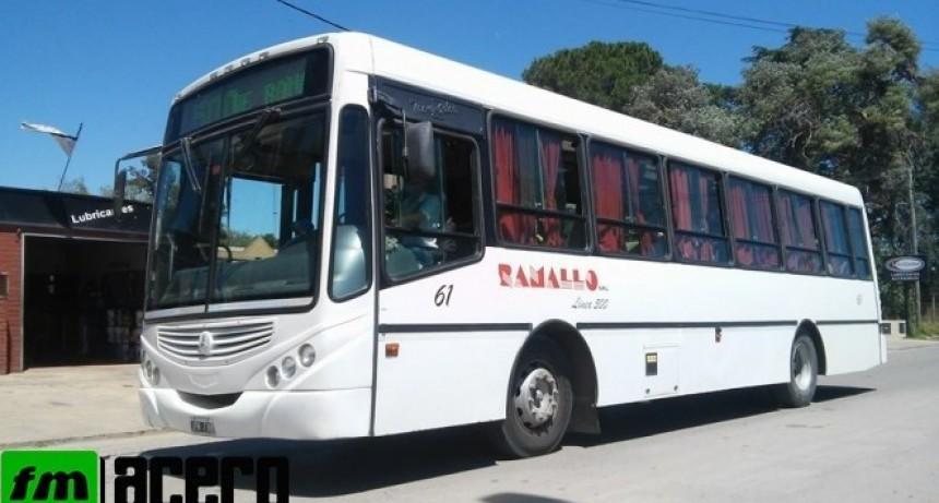 Sin transporte público  local