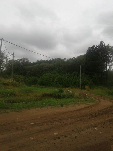 Vecinos piden por el mantenimiento de la ruta 1001